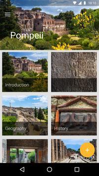 Pompeii Travel Guide poster