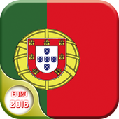 Soccer EURO 2016 Screen Lock icon