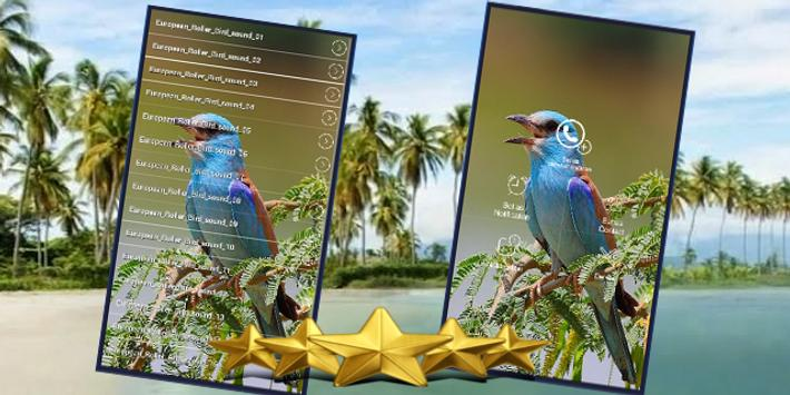 European Roller Sound : European Roller Song screenshot 1
