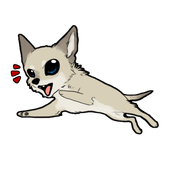 Hungry Dog icon