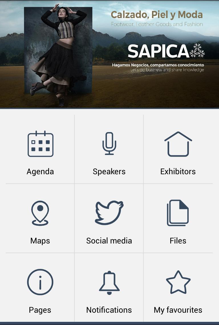 Sapica 2017 poster