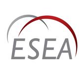 E-Services Excellence Award icon