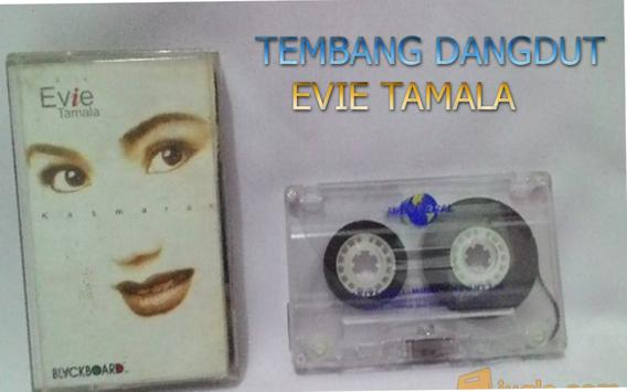 Evie Tamala ~ mp3 terpopuler apk screenshot