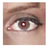 Retina Calculator icon