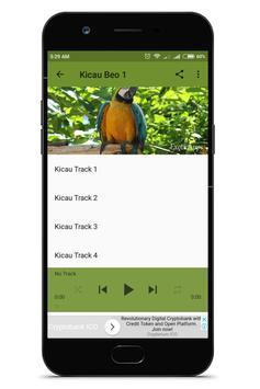Kicau Beo Offline screenshot 2