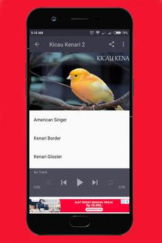 Kicau Kenari Offline apk screenshot