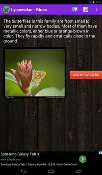 Butterflies Expo apk screenshot