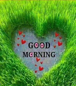 Hindi Good Morning HD Images apk screenshot