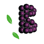 Berrybundle icon