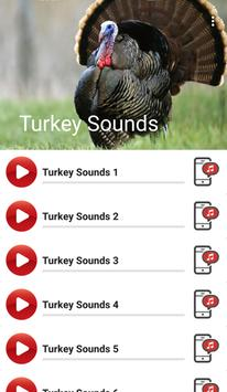 Turkey Sounds apk screenshot