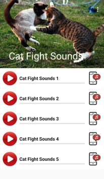 Cat Fight Sounds poster