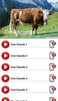 Cow Sounds apk screenshot