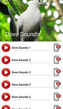 Dove Sounds screenshot 1