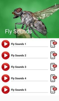 Fly Sounds poster