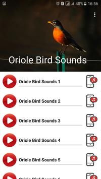 Oriole Bird Sounds poster