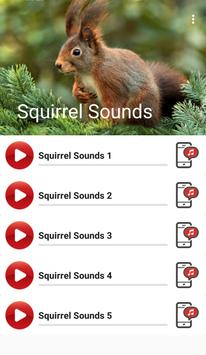 Squirrel Sounds poster