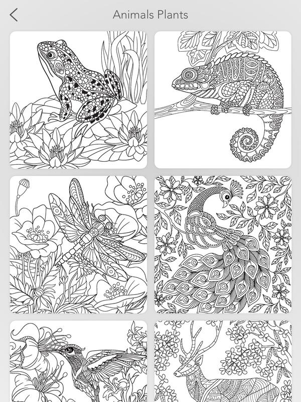 Garden Coloring Book APK Download - Free Art & Design APP for ...