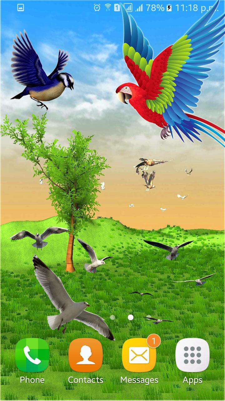Flying Birds Live Wallpaper 3d Phone Backgrounds For Android
