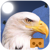 Eagle Fly VR icon