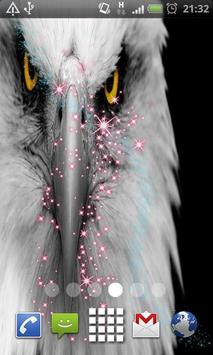 eagle Eyes Live Wallpaper poster