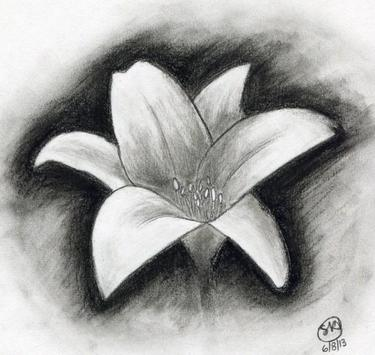 Facil Dibujo De Flores For Android Apk Download
