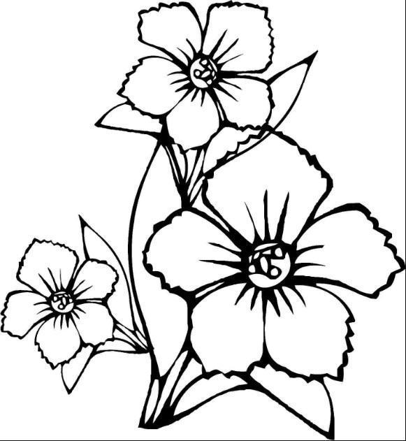 Facil Desenho De Flores Para Android Apk Baixar