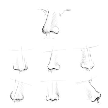 Easy Nose Drawing Tutorials screenshot 5