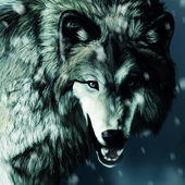 HD Wolf Wallpapers icon