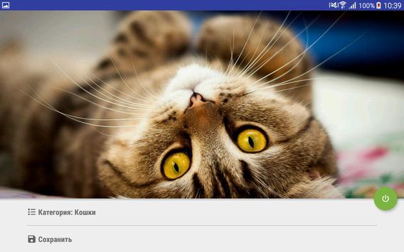 HDWallpapers apk screenshot