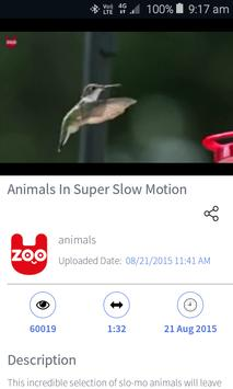 Video Player for Dailymotion screenshot 1