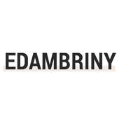 에담브리니 icon