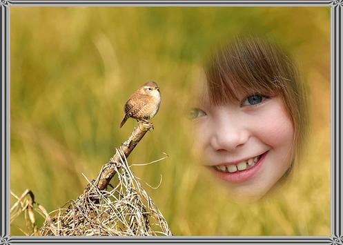 Bird Photo Frame apk screenshot