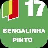 Bengalinha - Autárquicas 2017 icon