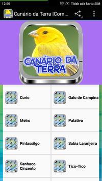 Canário da Terra |Completos screenshot 3