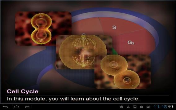 Cell cycle and Mitosis screenshot 3
