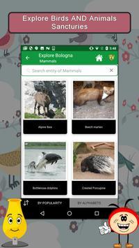 Bologna- Travel & Explore apk screenshot