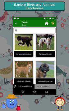 Evora screenshot 20