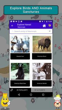 Explore Hawaii County Guide apk screenshot