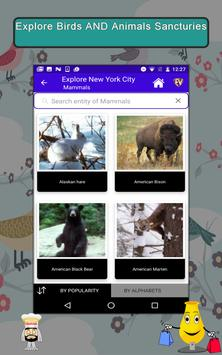 New York City- Travel & Explore screenshot 12