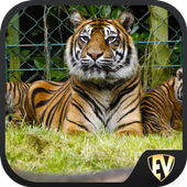 Famous Zoos- Travel & Explore icon