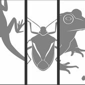 VR Animal Wild Adventure αTour icon
