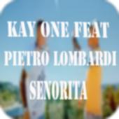 Senorita -  Musik 2018 icon