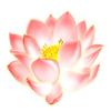 Icona 幸福十小咒