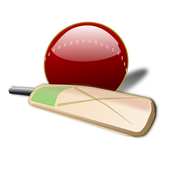 LiveCricket89 icon