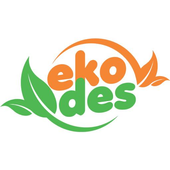 Ekodes icon
