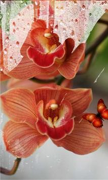 Flowers Best live wallpaper apk screenshot