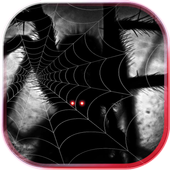 Halloween Horrors HD live wallpaper icon