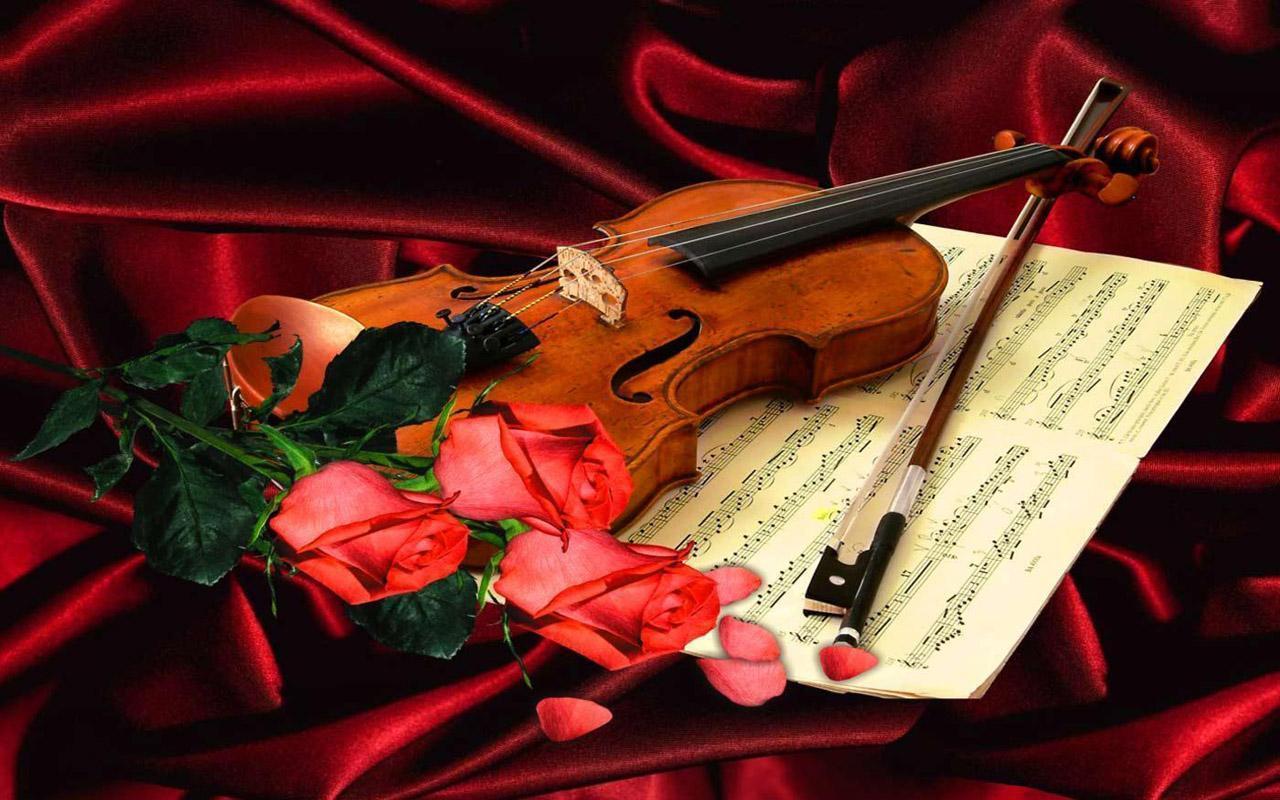 Rose N Violin For Android Apk Download