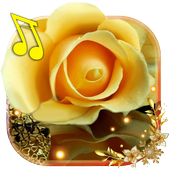 Roses Gallery live wallpaper icon