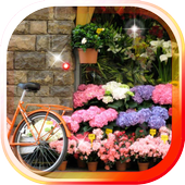 Spring Flowers 2016 icon